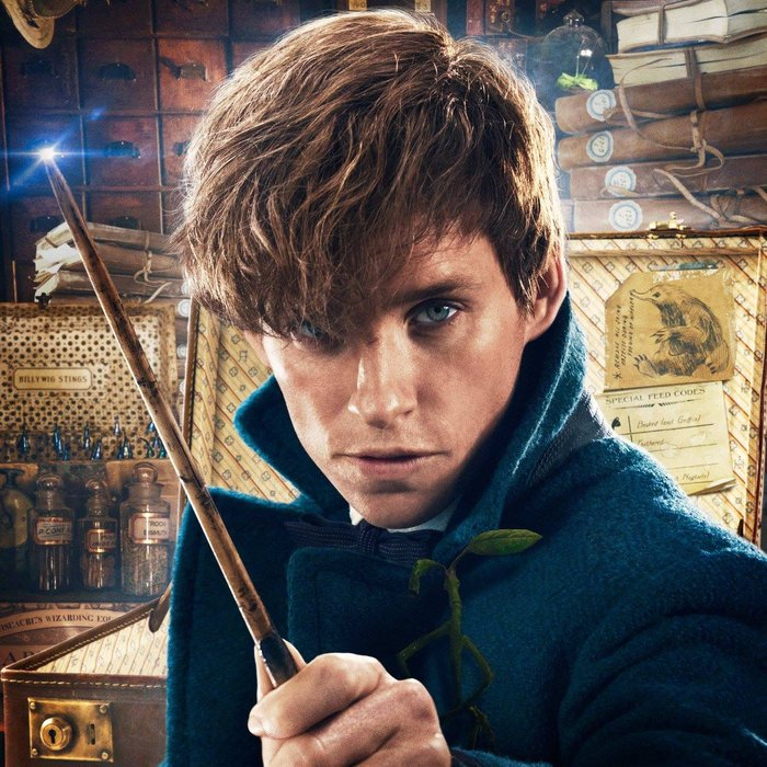 fantastic-beasts-and-where-to-find-them-1476282246-custom-0